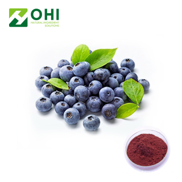 Beku Kering Bilberry Fruit Juice Powder
